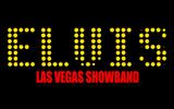 Elvis Las Vegas Showband